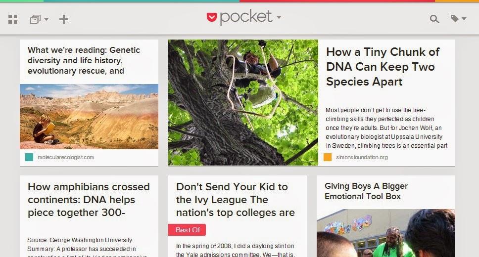 websites like lifehacker