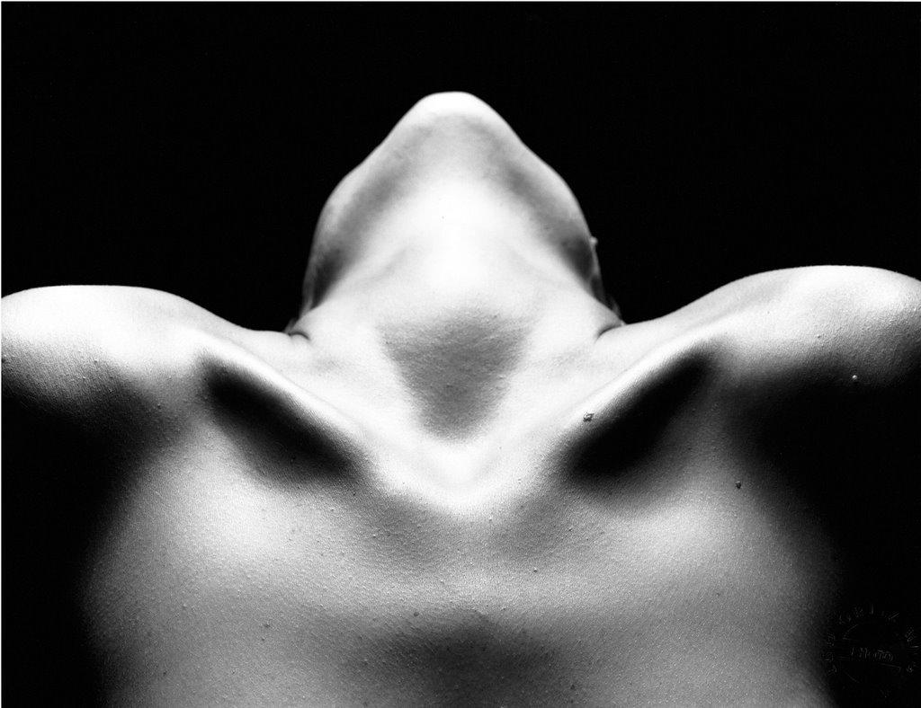 Desnudo artistico o pornovision?