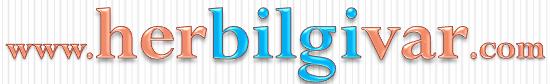 AKTÜEL, BİM, A101, ŞOK