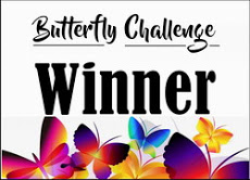 I Won The Butterfly Challenge!