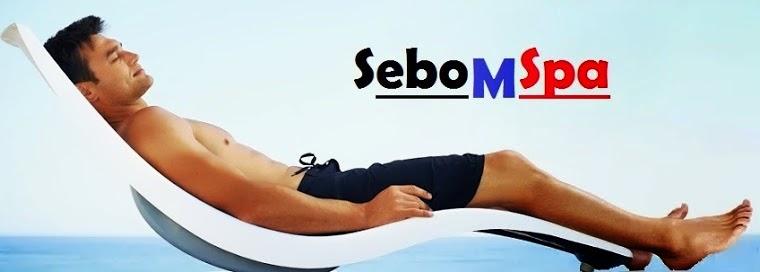 www.sebomassage.com