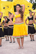 Ester Noronha Photos from Bheemvaram Bullodu-thumbnail-20