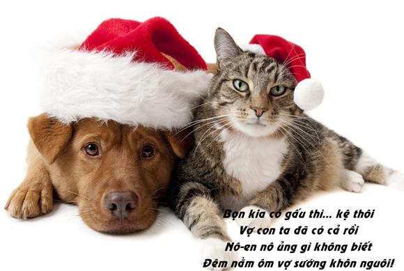 Những stt Noel buồn , Noel cô đơn