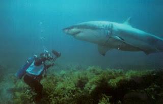يقول سمعت الاذان على عمق 61 مترا تحت سطح البحر!!
