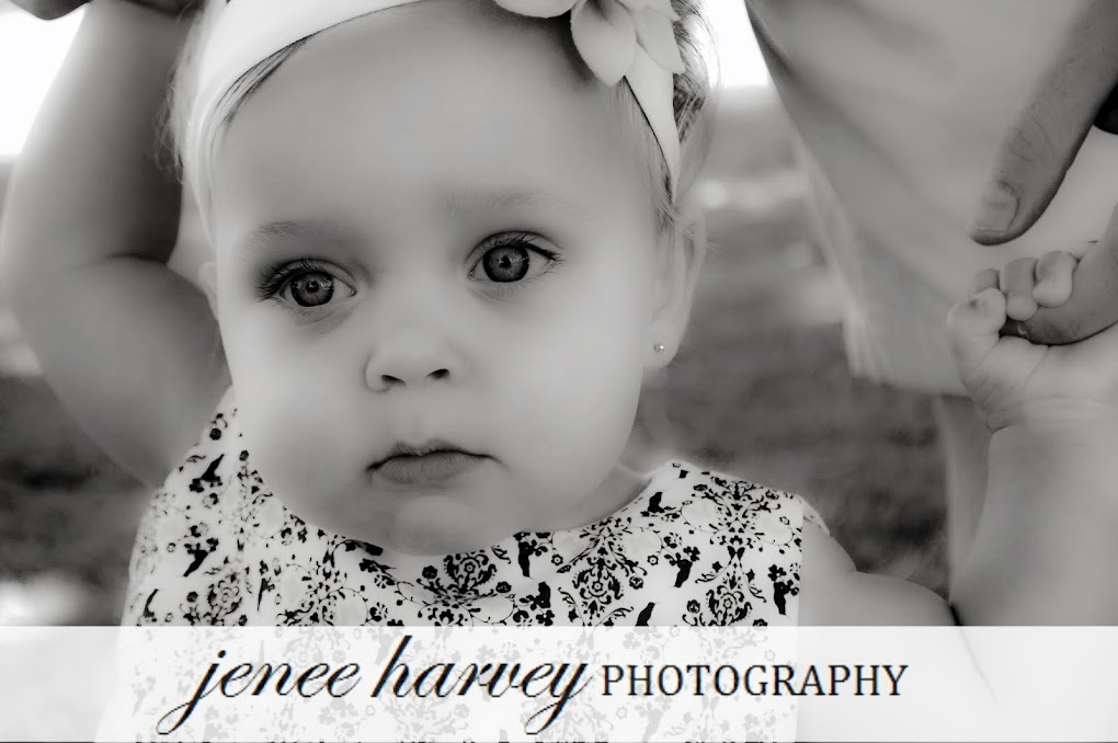 Jenee Harvey Photography