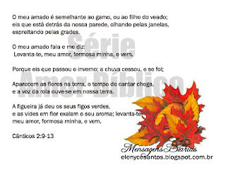 www.facebook.com/msgdiarias