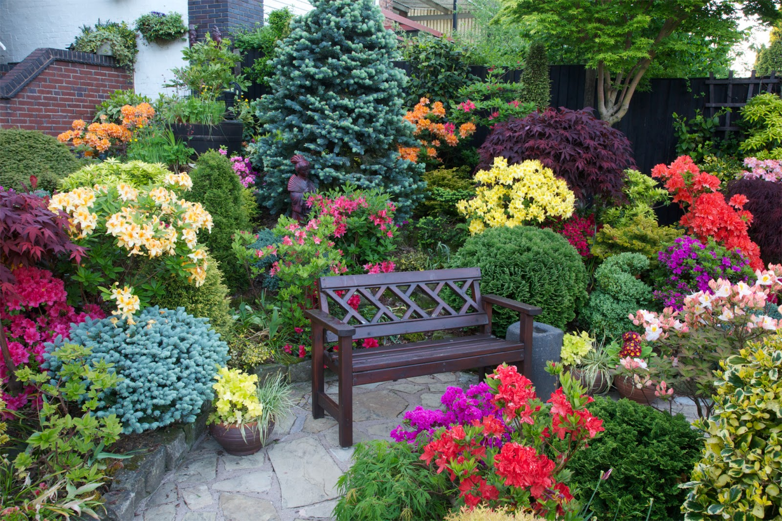 seat amongst the azalea flowers - Flowers For Home Garden
