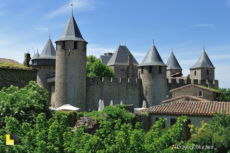 Carcassonne, le château comtal émerge de la frondaison des arbres photo pascal blachier