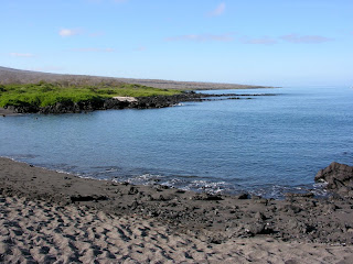 The Beach at Urbina Bay, Isabela Island, Galapagos