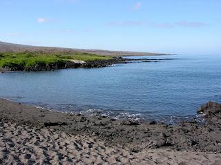 The Beach at Urbina Bay, Isabela Island, Galapagos