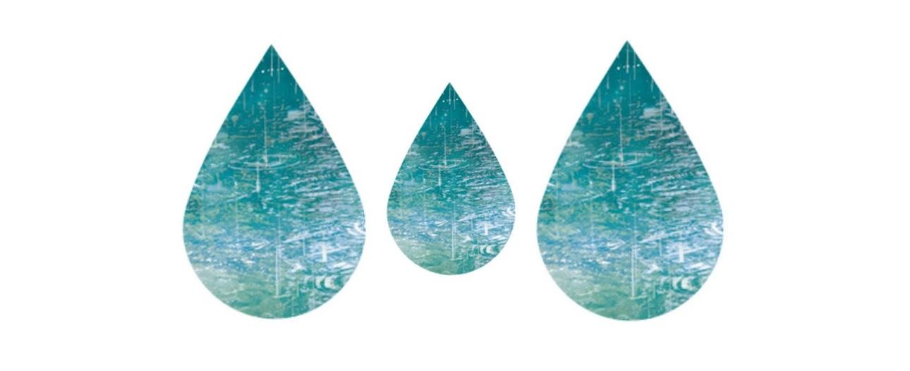 I Regnet