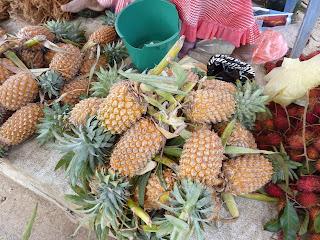 Fruits exotiques Sri Lanka Pitya