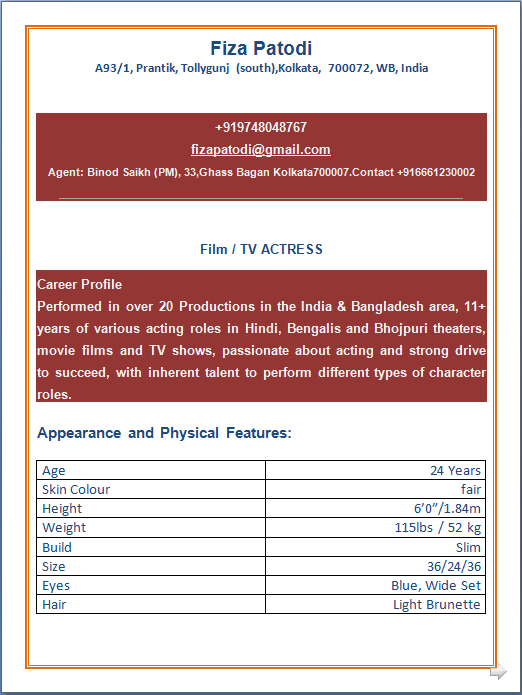 Professional Resume Excellent Resume format of
