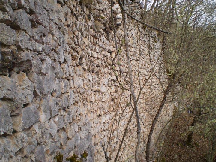 Древни град Борач, у земљи Павловића 30283_426599727951_6606505_n