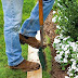 The best way to edge a lawn #Landscaping