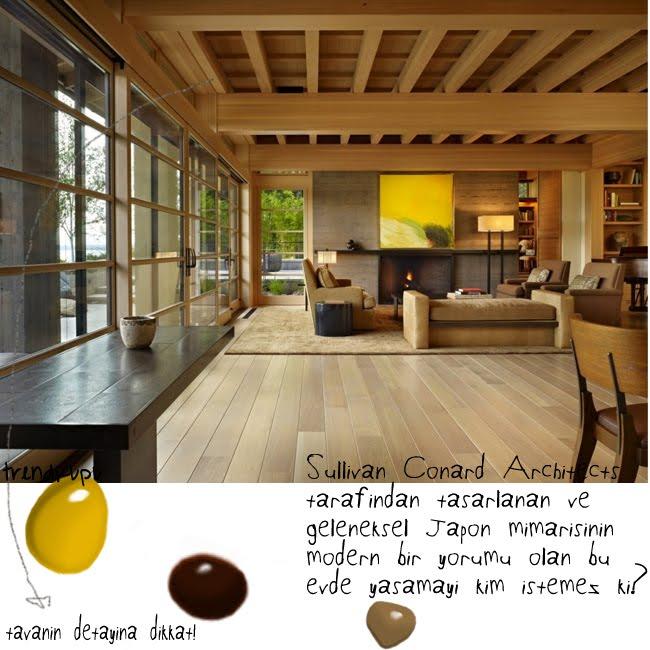 wooden_ceiling_trendkupu
