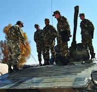 القوات البرية الجزائرية  12%25C3%25A9me+Division+d%25E2%2580%2599Infanterie+m%25C3%25A9canis%25C3%25A9e2