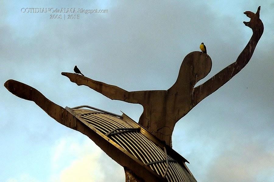 pássaro, passarinho, cotidiano da alma, Ezequiel Rodrigues, Capitania das Artes