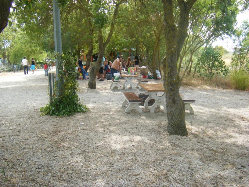 Parque de Merendas do Tejo