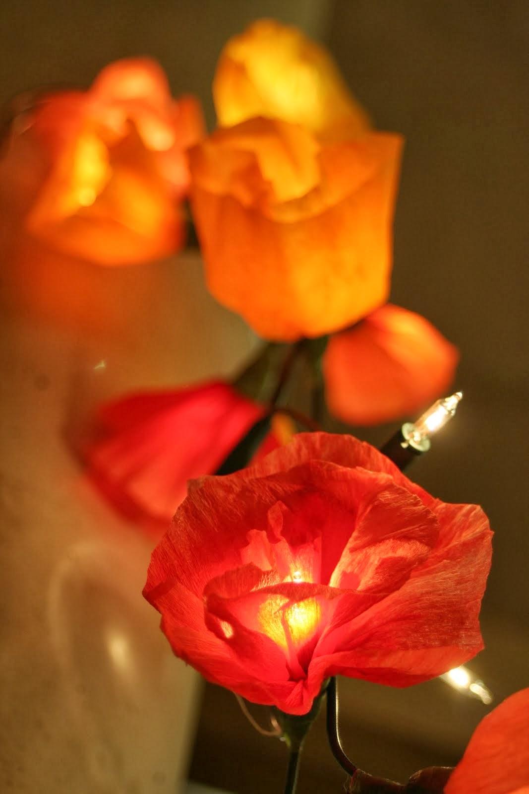 Bloemenlichtjes.