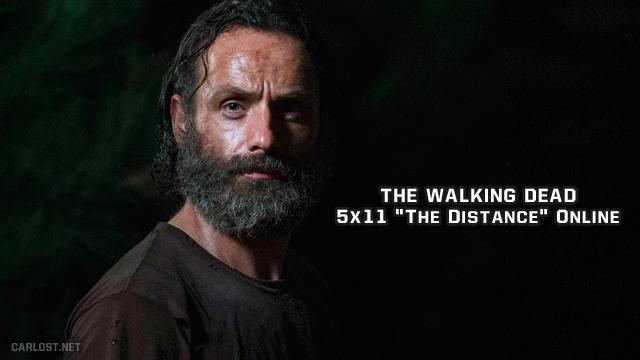 The Walking Dead 5x11 (Online)