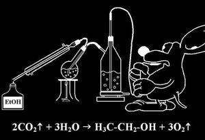 Czy alkohol etylowy (wzór chemiczny: C2H5OH) mógłby powstać z tlenku węgla (IV) i  tlenku wodoru?