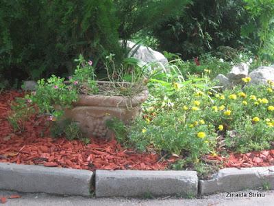 sinaia-parcul-d.ghica-aranjamente-florale-2