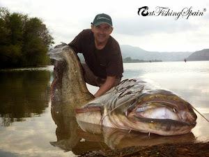 Catfishing Spain