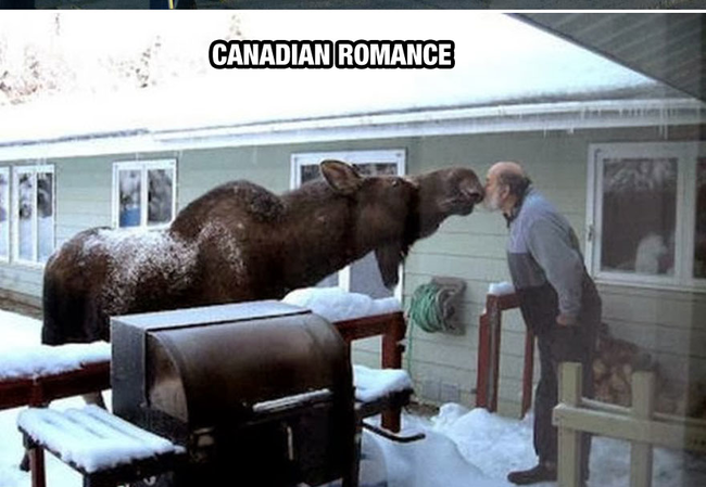Love at first sight. - Life In Canada Is So Much Different, And Colder, Than Life Anywhere Else.