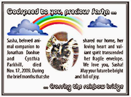 Display-ad format obituary. Above a rainbow between clouds, the caption reads, Godspeed to you precious Sasha ... It continues on the bottom reading, ... Crossing the rainbow bridge. In the center of the ad, body text wraps around an oval picture of the face of a long-haired tortoiseshell cat. Text reads: Sasha, beloved animal companion to Jonathan Donihue and Cynthia Parkhill, died Nov. 17, 2009. During the brief months that she shared our home, her loving heart and valiant spirit transcended her fragile envelope. We love you, Sasha! May your future be bright and full of joy.