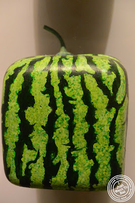Image of a Square melon at the Museum of Natural History in NYC, New York - Global Kitchen exhibit