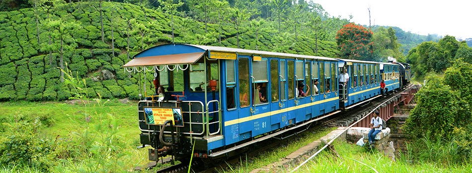 Nilgiri Mountain Railway trekking
