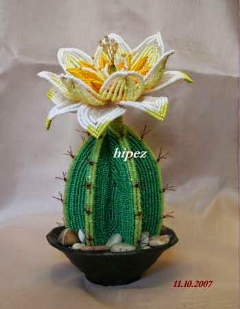 цветущий кактус +из бисера