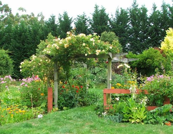 10 plantas trepadoras para cubrir p rgolas o cenadores guia de jardin - Plantas trepadoras para pergolas ...