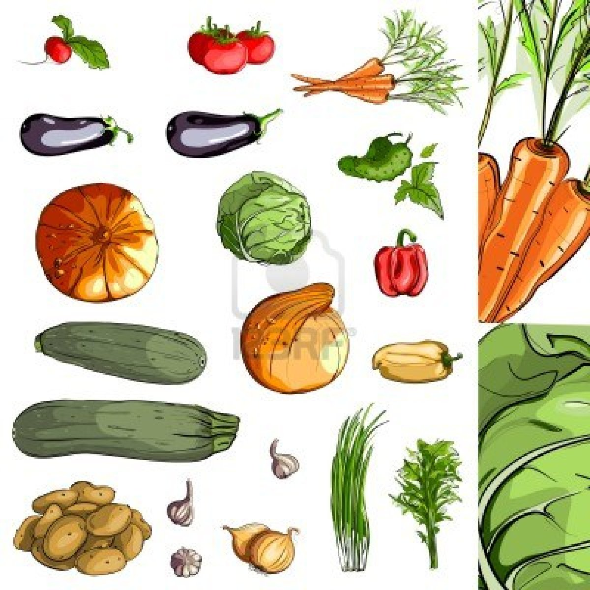 All vegetables images reverse search for Farcical reversal