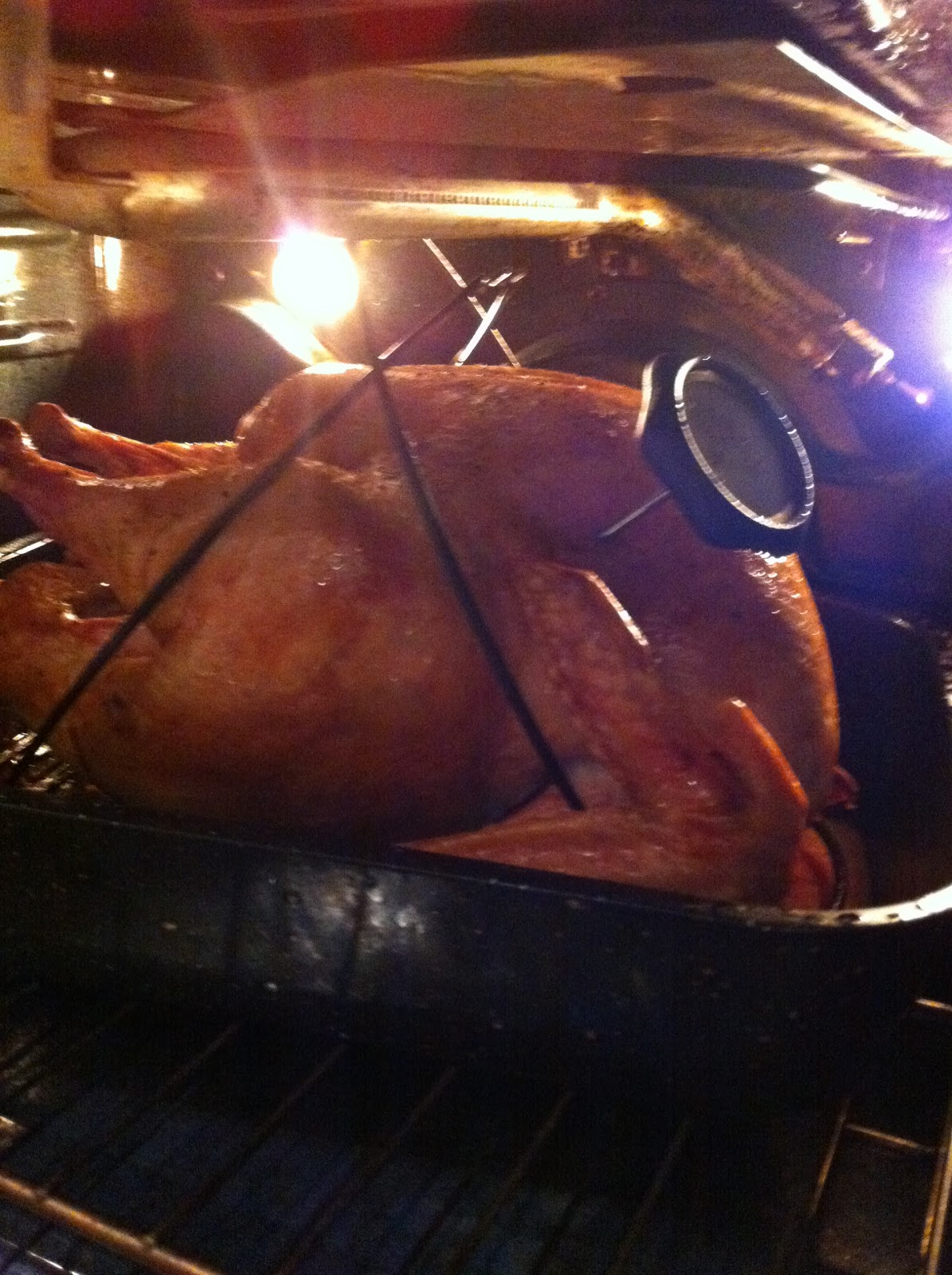 how to long to cook a 12 lb stuffed turkey