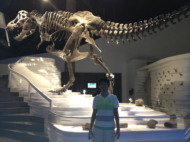 Stan the T-Rex, The Mind Museum