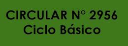 CICLO BÁSICO