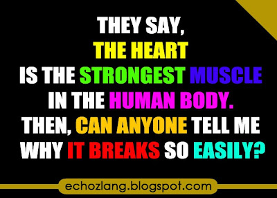 The heart is the strongest muscle in the human body.