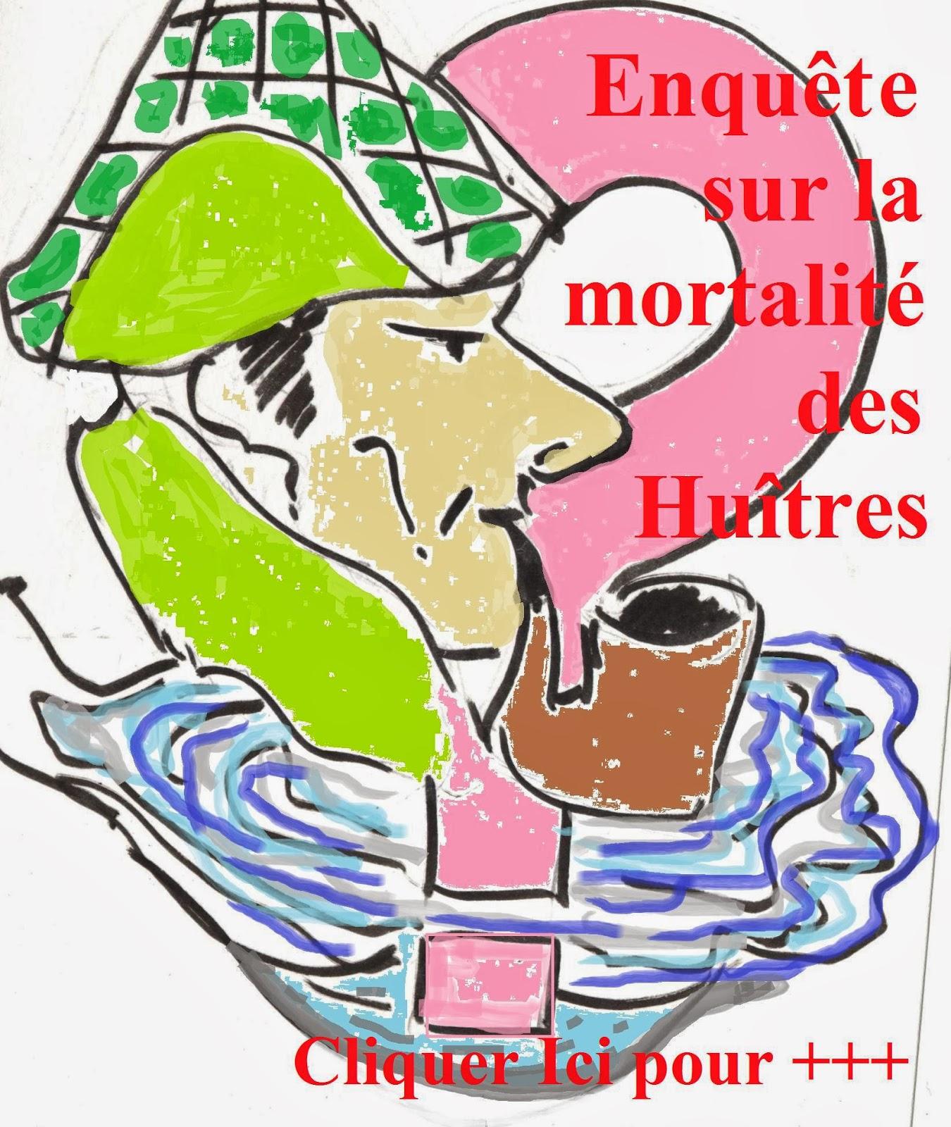 http://aquaculture-aquablog.blogspot.fr/2014/01/mortalite-huitre-enquete-le-bitoux.html#but1