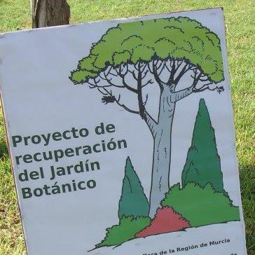 Recuperaci n del jard n bot nico atenci n a la for Amigos del jardin botanico