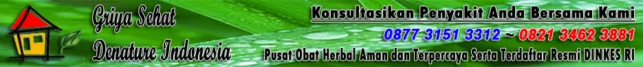 Pengobatan Herbal Denature Indonesia Sipilis Raja Singa Kencing Nanah