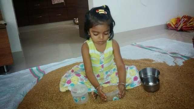 Filling Wheat