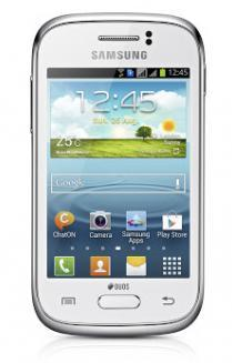 Samsung Galaxy Young S6310 (1)