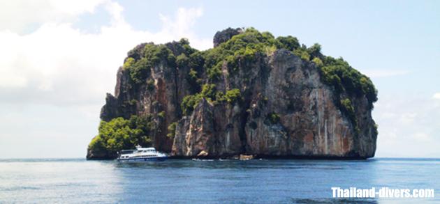 www.thailand-divers.com