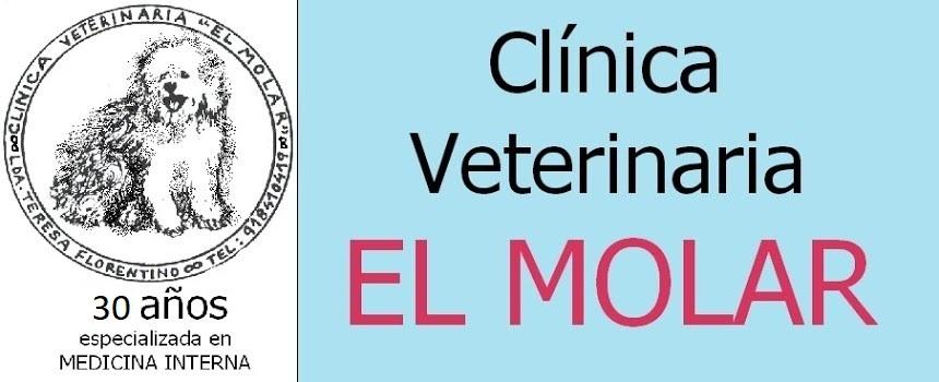 Clínica Veterinaria El Molar