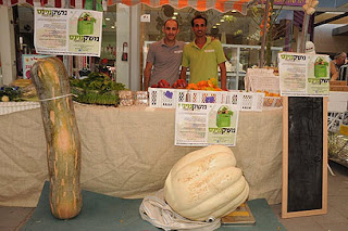 Beschrijving: http://2.bp.blogspot.com/-ctGJue8IojM/Ti2nYXeNORI/AAAAAAAAEf0/MValZN7x7N0/s320/pumpkins.jpg