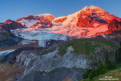 Evening alpenglow at sunset on Mount Rainier from Emerald Ridge, Mount Rainier National Park, Cascade range, Washington, USA.