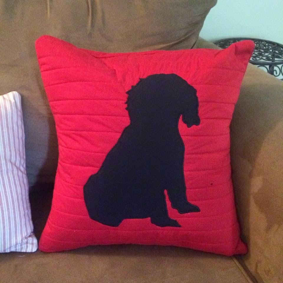 Do-It-Myself Crafts: Throw Pillows - Pinterest Project
