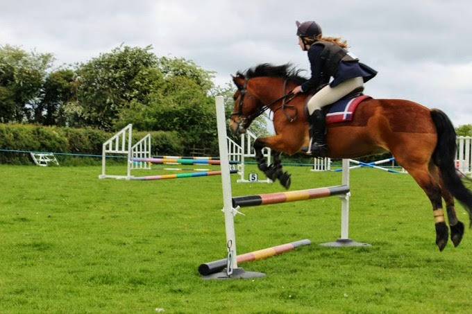 Show Jumping at EDRC with my New Forest Pony, Rocky